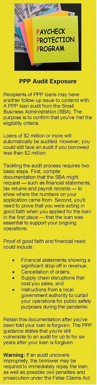 PPP Audit Exposure